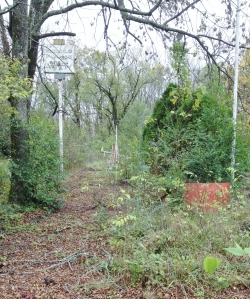 The remains of the Arnold Palmer miniature golf course. Notice the sign in the upper right corner and the windmill in the center of the photograph.